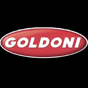 logoGoldoni - Wikipédias
