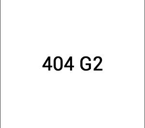 Dongfeng 404 G2