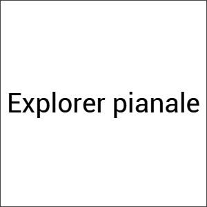 Same Explorer pianale